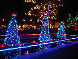 the vandusen festival of lights is on dec 10 to jan 4 fabulously