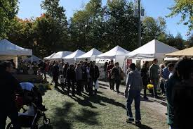 s falls thanksgiving festival 2018 travel top 6