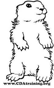 photos groundhog cut groundhog template shadow