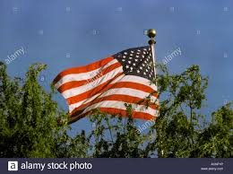 Texas Flag Half Staff American Flag Texas Flag Flying Stockfotos U0026 American Flag Texas
