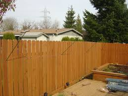 Keep Cats In Backyard Catproof Your Yard 8 Steps With Pictures