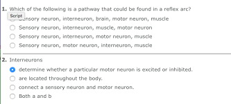 Motor Reflex Arc Which Of The Following Is A Pathway That Could Be Chegg Com