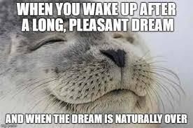 Dream Meme - when you wake up after a long pleasant dream meme xyz