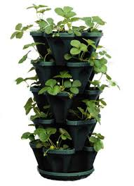 Vertical Garden Pot - 5 tier stackable strawberry herb flower u0026 vegetable planter
