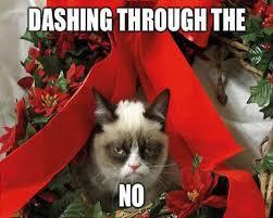 Image 9 Best Grumpy Cat - 2012 s best of grumpy cat christmas gallery ebaum s world