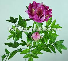 Wholesale Peonies Natural Flowers Wholesale High Quality Fabric Flower 2 Stems Real