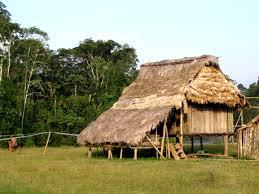 La Maison Du Sud Amérique Du Sud Equateur Une Semaine Dans Une Comunauté Shiwiar
