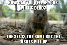 Bad Sex Meme - the sex is the same but the dishes pile up justpost virtually