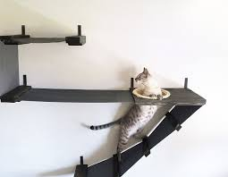 trend wall mounted shelves for cats 38 about remodel wall mounted