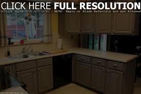 cabinet kitchen cabinet paint stylish kitchen cabinet paint