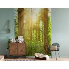 komar redwood wall mural xxl2 044 the home depot komar redwood wall mural