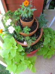 small space gardening on a budget maggie u0027s mind mumbles