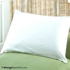 bed pillow reviews down pillows reviews and down pillows reviews latex pillows best bed