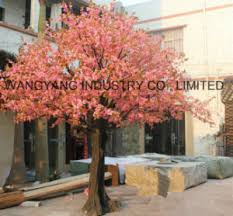 china high quality cheap price factory sale cherry blossom tree in