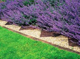 the benefits of metal landscape edging home decor and design ideas