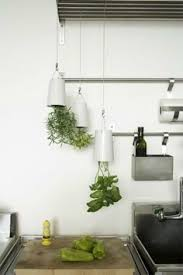 small indoor herb garden might be adaptable for an rv kitchen
