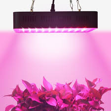 commercial led grow lights aliexpress com buy populargrow 300w led grow light full spectrum
