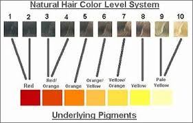 Types Of Hair Colour by Hair Color Types Hair Color Formula Hair Coloring Types Hair