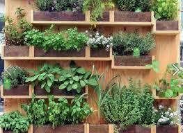 Urban Herb Garden Ideas - wall mounted herb garden ideas pallet wood creative vertical
