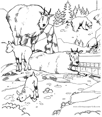 animal coloring pages adults animals coloring pages