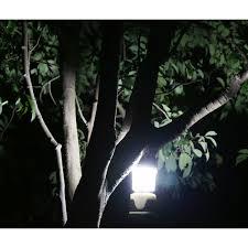 awesomeness of outdoor tree lights lighting