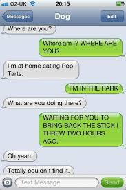 Trending Funny Text Messages To - the 35 funniest text messages dogs would send if they could text