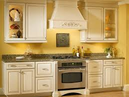 kitchen cabinets amusing kitchen cabinet colors horrifying