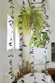 indoor trees that don t need light delectable bathroom plants decor artificial uk india no window nz
