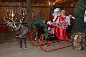 north pole news double r reindeer ranch