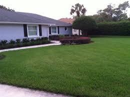Landscaping Lawn Care by Spectrum Lawn U0026 Landscape Lawn Care U0026 Pest Control Clearwater Florida
