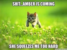 Amber Meme - amber meme google search amber memes pinterest amber