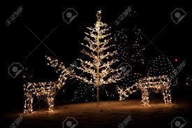 lighted reindeer lighted christmas reindeer christmas lights decoration