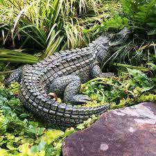 garden alligator statue only 79 99 at garden fun