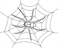 magnificent good spider coloring sheets picture unbelievable