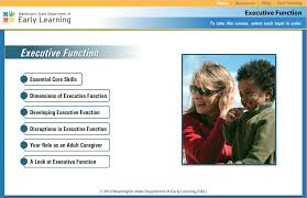 functional executive executive function self regulation