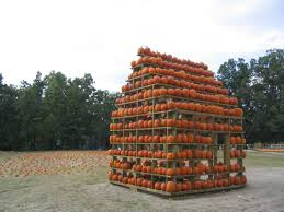 find pick your own pumpkin patches hayrides corn mazes and