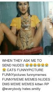 Funny Memes To Send - 1 when they ask me to send nudes cats funnypicture