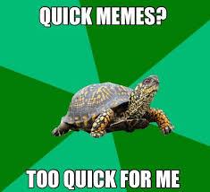 Quick Memes - quick memes home facebook