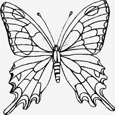butterfly template for royal icing
