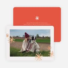 holiday photo cards paper culture