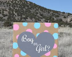 balloons in a box gender reveal gender reveal box etsy