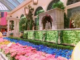 Botanical Gardens In Las Vegas Tripbound Tripbound Las Vegas