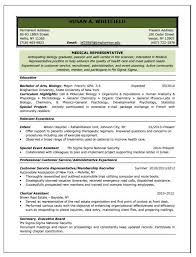 Resume Structure Professional Resume And Cv Samples