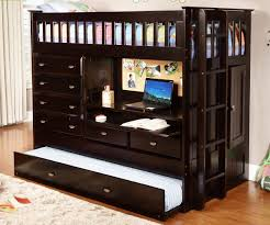 Espresso All In One Loft Bed Dream Rooms Furniture - Espresso bunk bed