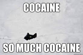 So Much Cocaine Meme - cocaine so much cocaine misc quickmeme