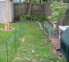 small dog fence back yard area dogs but i do not think it would