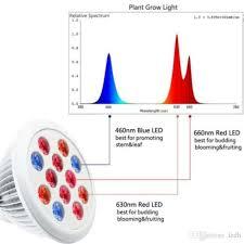 what color light do plants grow best in par spot light type plant grow l with red blue 12w