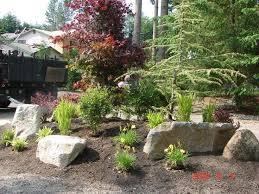 gardening tips 43 best step outside gardening tips and tricks images on