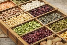 getting enough protein with a whole food plant based diet