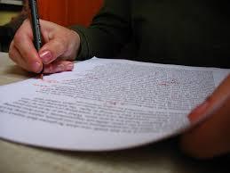 Job Application Essay Example Job Application Essay Samples FAMU Online
